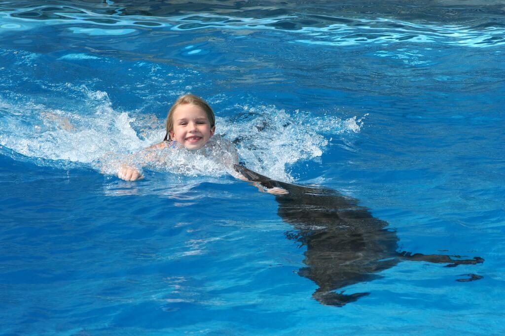 swim with a dolphin in panama city beachGulf World Marine Park