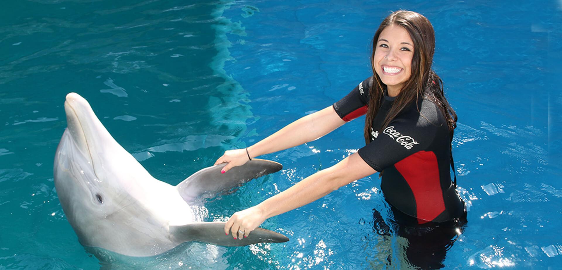 dolphin-fins.jpg